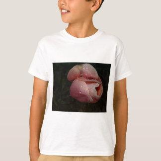 Tulip Dew T-Shirt