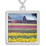 Tulip display field jewelry