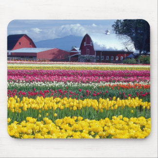 Tulip display field mouse pad