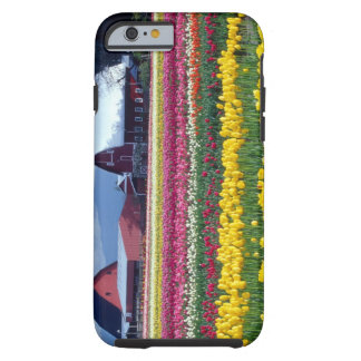 Tulip display field tough iPhone 6 case