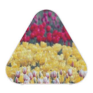 Tulip display garden in the Skagit valley, Bluetooth Speaker