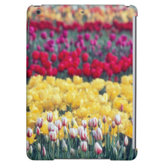 Tulip display garden in the Skagit valley, iPad Air Cover