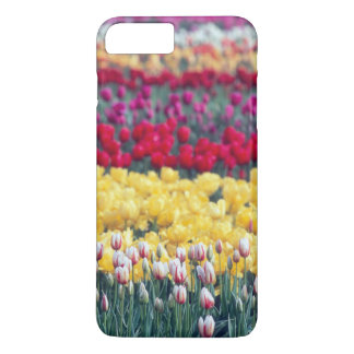 Tulip display garden in the Skagit valley, iPhone 8 Plus/7 Plus Case