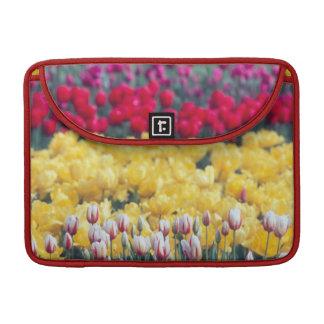 Tulip display garden in the Skagit valley, Sleeve For MacBooks