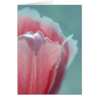 Tulip Edge Card
