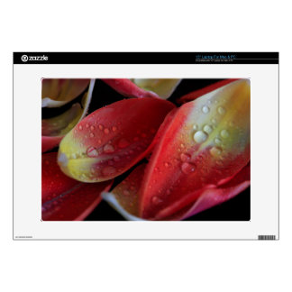 Tulip Embers Laptop Decals