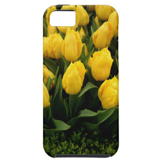 Tulip Festival - 27 Case for IPhone 5/5S