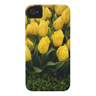 Tulip Festival - 27  IPhone 4 Case-Mate Cases