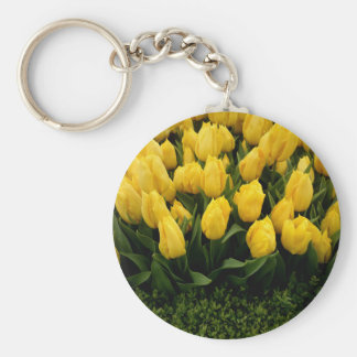 Tulip Festival - 27 Keychains