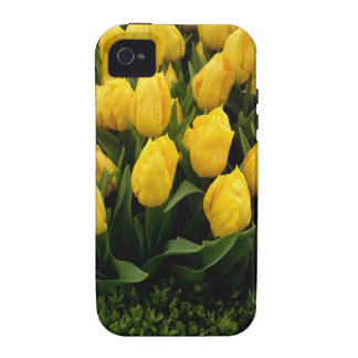 Tulip Festival - 27 Vibe IPhone 4 Covers