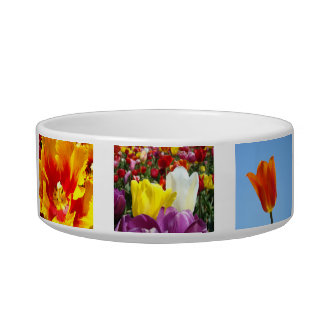 Tulip Festival Flowers Dog food water bowls Tulips Cat Food Bowls