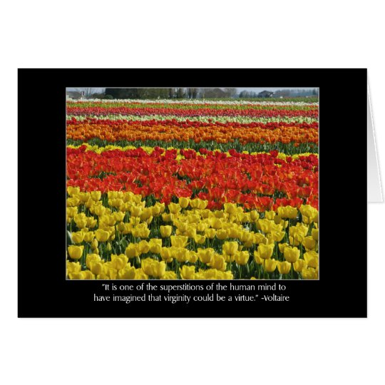 Tulip Field and Voltaire Quote Card