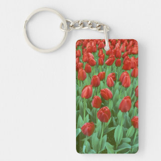 Tulip field blooms in the spring acrylic key chains