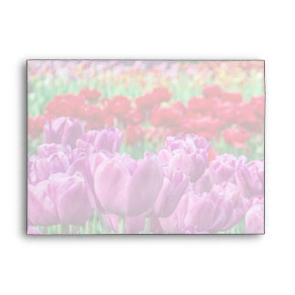 Tulip Field Envelope
