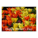 Tulip field for Mother's Day Greeting Card