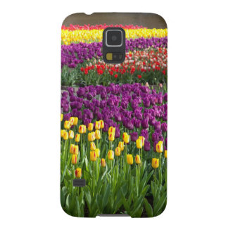 Tulip Field Galaxy S5 Case