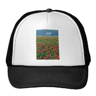 Tulip Field In Front Of Farm flowers Mesh Hats
