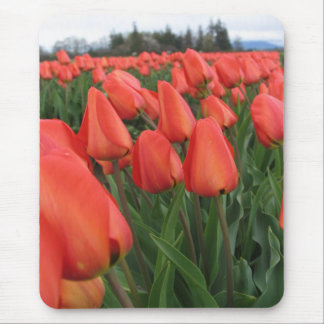 Tulip Field Mouse Pad
