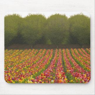 Tulip Field Mousepad