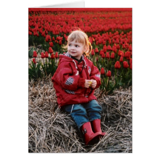 Tulip Field notecards Card