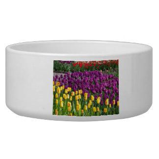 Tulip Field Pet Bowl