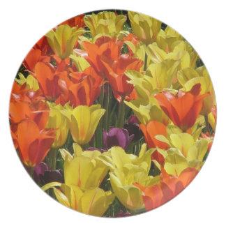 Tulip field plate