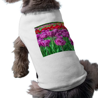 Tulip Field Shirt