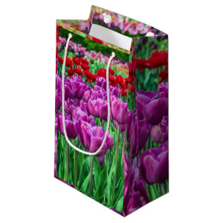 Tulip Field Small Gift Bag