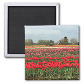 Tulip Field with Tractor and Barn Magnet