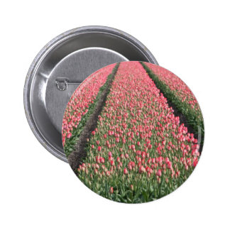 Tulip Fields Pin