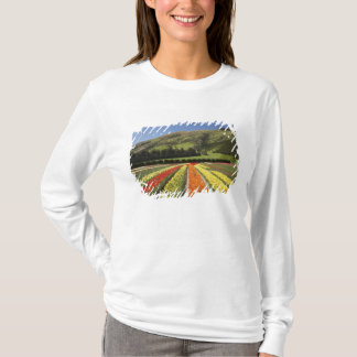 Tulip Fields, near Tapanui, West Otago, South 2 T-Shirt