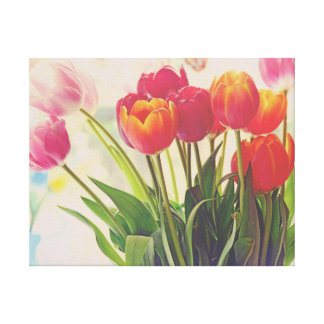 Tulip Flower Beauty Floral Canvas Print