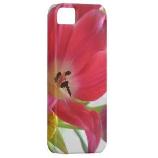 Tulip Flower iPhone 5 Case