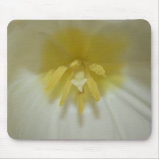 Tulip Flower Mouse Pad