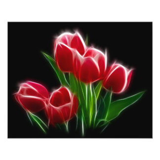 Tulip Flower Red Plant Flyer