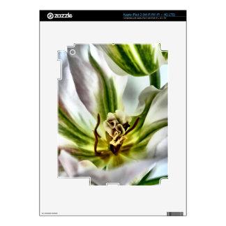 Tulip Flower iPad 3 Skin