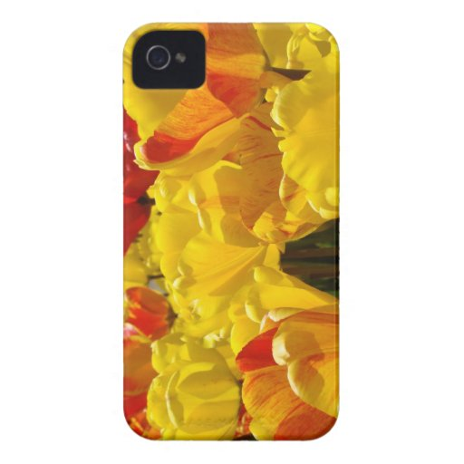 Tulip Flowers Blackberry Bold Tulips Personalized Blackberry Bold Cases