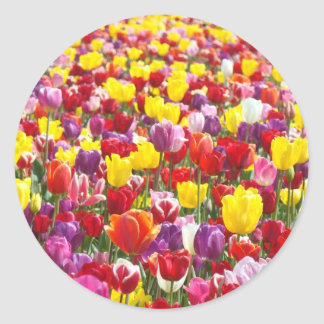 Tulip Flowers stickers Spring Floral seals