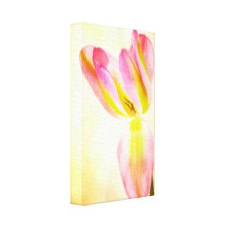 Tulip Gallery Wrap Canvas