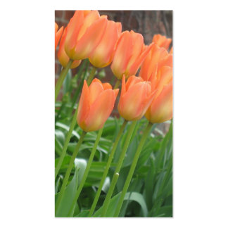 Tulip Garden Business Card