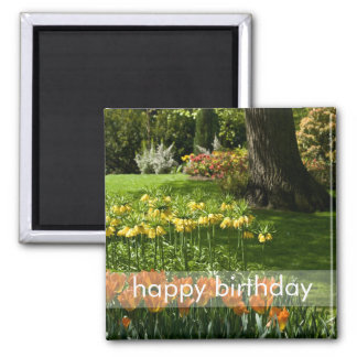 Tulip Garden DSC0838 2 Inch Square Magnet