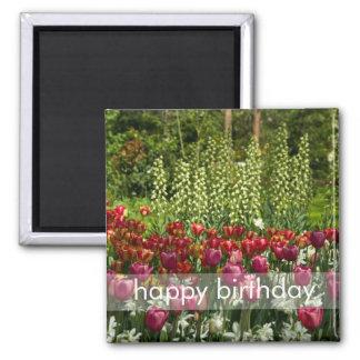 Tulip Garden DSC0850 2 Inch Square Magnet
