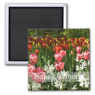 Tulip Garden DSC0855 Refrigerator Magnet