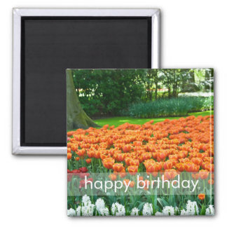 Tulip Garden DSC0861 2 Inch Square Magnet