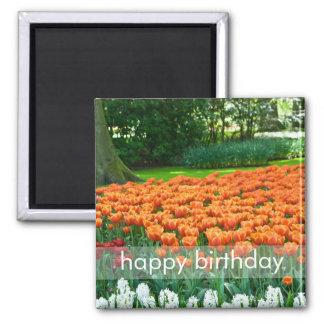 Tulip Garden DSC0861 Refrigerator Magnets