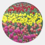 Tulip Garden Floral Stickers