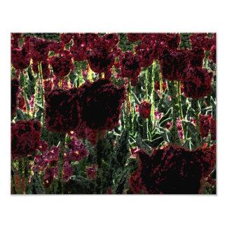 Tulip Garden Photo Art / burgundy, black & green