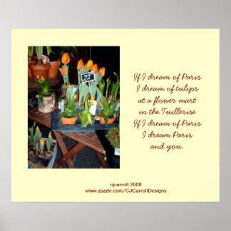 Tulip Garden Poster-Print Poster