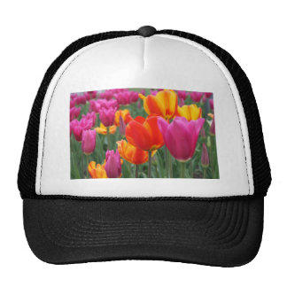 Tulip garden trucker hat