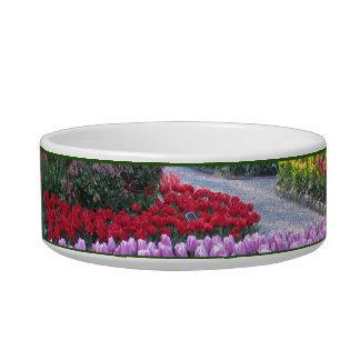 Tulip Gardens Bowl